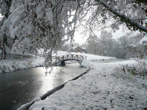 Patrimoine culturel - Parcs et Jardins - Domaine du Ciran MENESTREAU-EN-VILLETTE - Vos vacances en Loiret Val de Loire près de Paris
