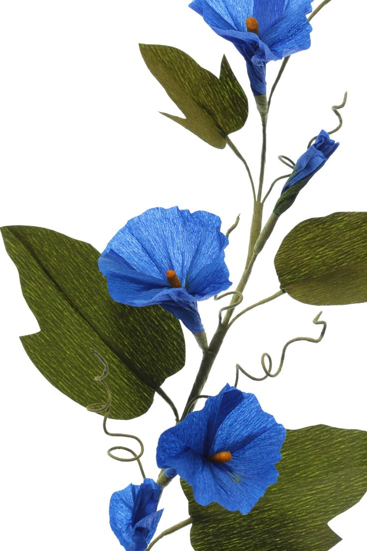 """Crepe paper flower MORNING GLORY VINE, handmade and photographed by Papetal. Instructions and templates in """"100 Simple Paper Flowers"""" by Kelsey Elam."""