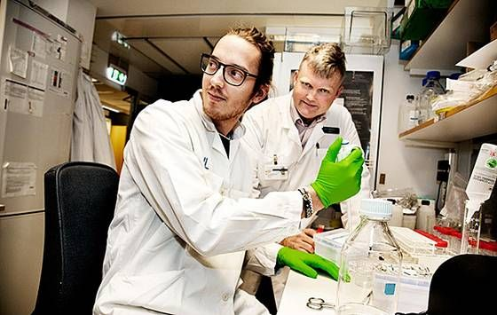 Cellfälla nytt vapen mot autoimmuna sjukdomar   Ny Teknik