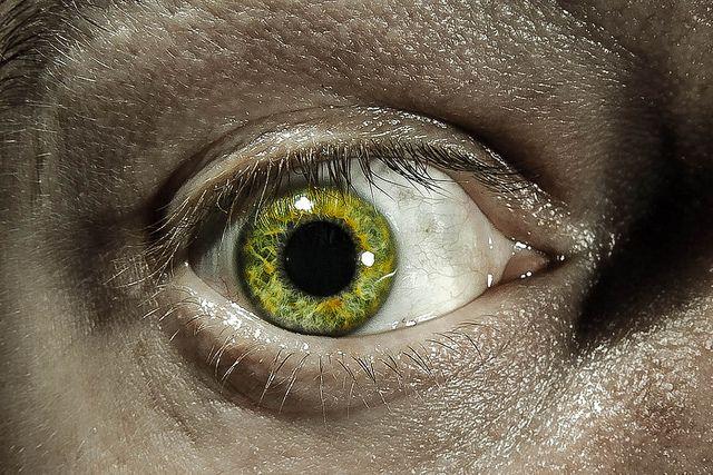 Green | Flickr - Photo Sharing!