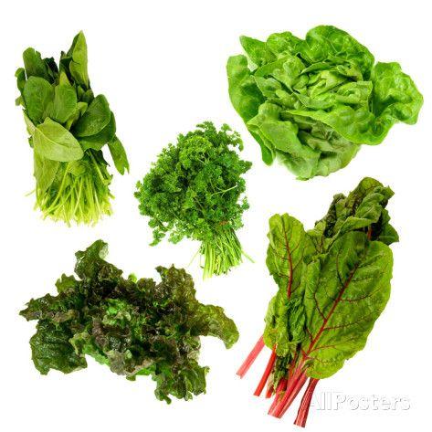 Healthy Dark Green Vegetables Photographic Print