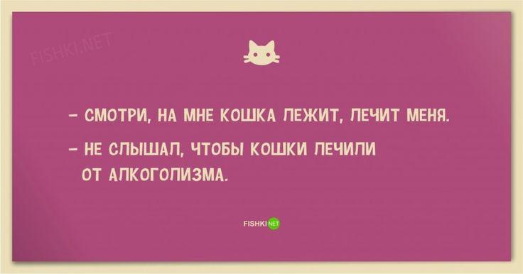 Анекдоты про котов и кошек