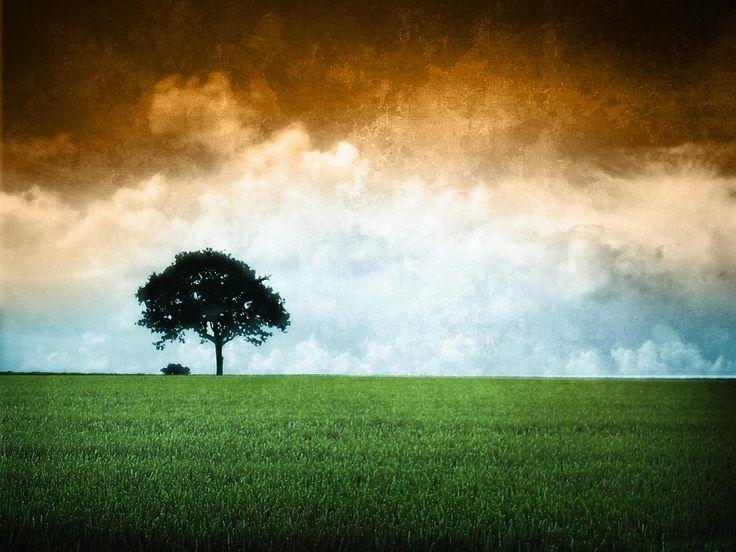 India flag hd 3 Wallpaper, free india flag hd download