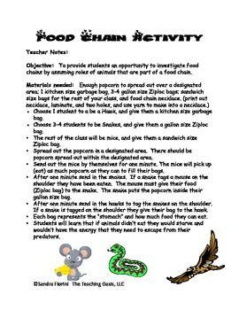 Food chain activities pinterest te science ve hayvan uyarlamalar
