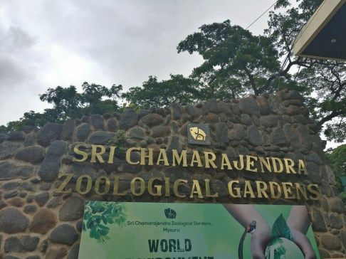 Mysore Zoo   #MyCupOfCoffee