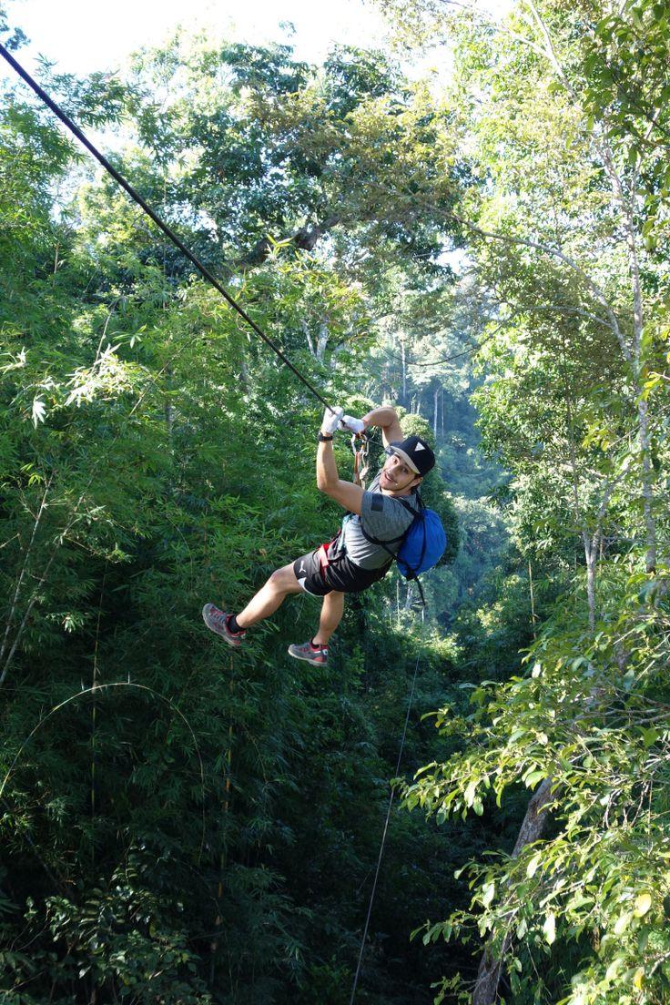 Gibbon Experience. Laos.