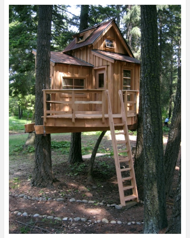 25 amazing and affordable treehouses youu0027ll want to rent for your next vacay 50 kids treehouse designs i think this is the winner for the new house