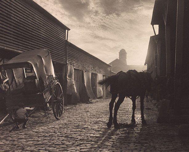 Harold Cazneaux (New Zealand, Australia 1878–1953)  Paddys Market   1906  gelatin silver photograph