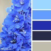 синяя палитра
