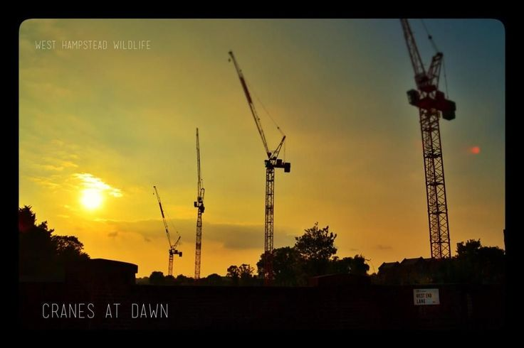 Morten Schultz took the West Hampstead cranes at sunset idea a step further