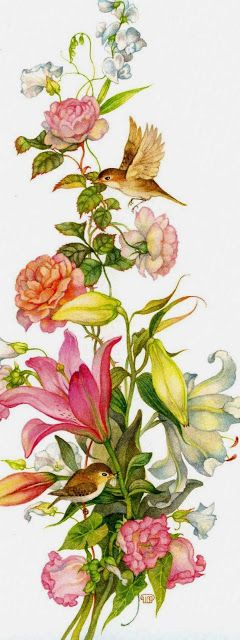 7 of Arts: Illustrations with flowers, fruits and birds. Artist  Olga Jonaitis