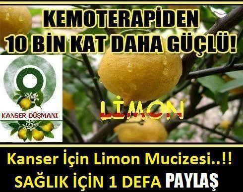 Kanser için limon mucizesi
