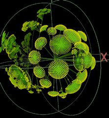 Using Walrus to project a network graph into a 3D hyperbolic space