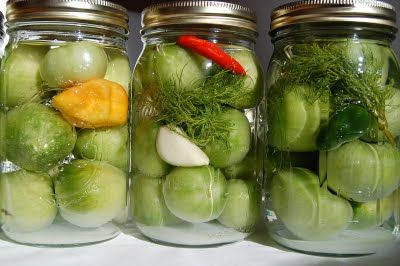 Lacto-Fermented Green Tomato Pickles: Fermented Food, Pickled Green, Pickled Tomatoes, Green Tomatoes, Hippo Flambé, Fermented Green, Lacto Fer Green, Tomatoes Pickled, Cucumber Pickled