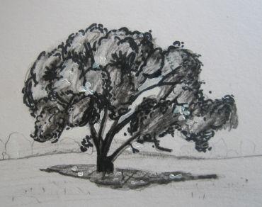 1000 id es sur le th me comment dessiner un arbre sur pinterest what diy means projets. Black Bedroom Furniture Sets. Home Design Ideas