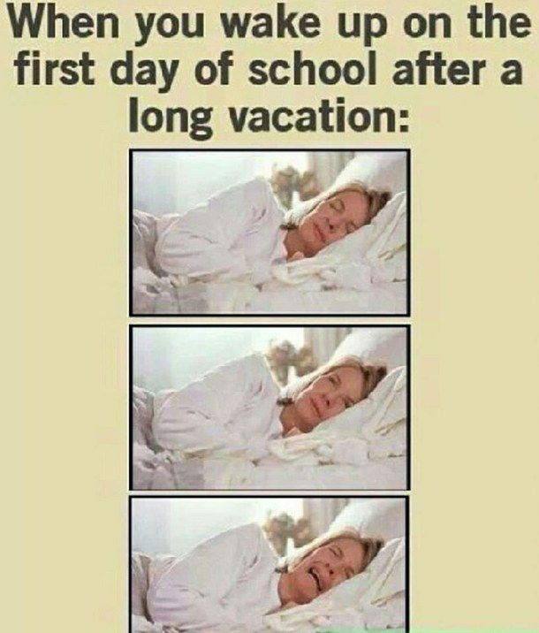 Quotes About Going Back To School Funny: Best 25+ Funny Quotes About School Ideas On Pinterest