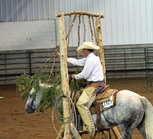 natural horse trail obstacles - Google Search