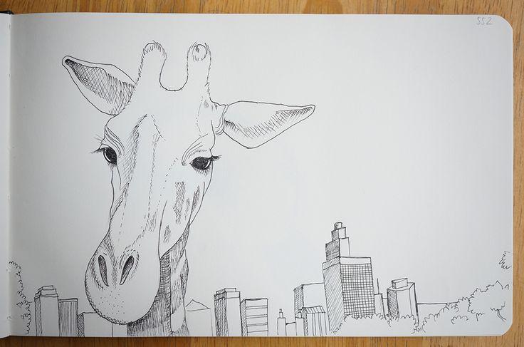 Giraffe - Portraits in landscape