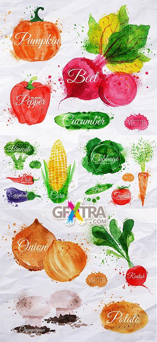 Drawing watercolor vegetables