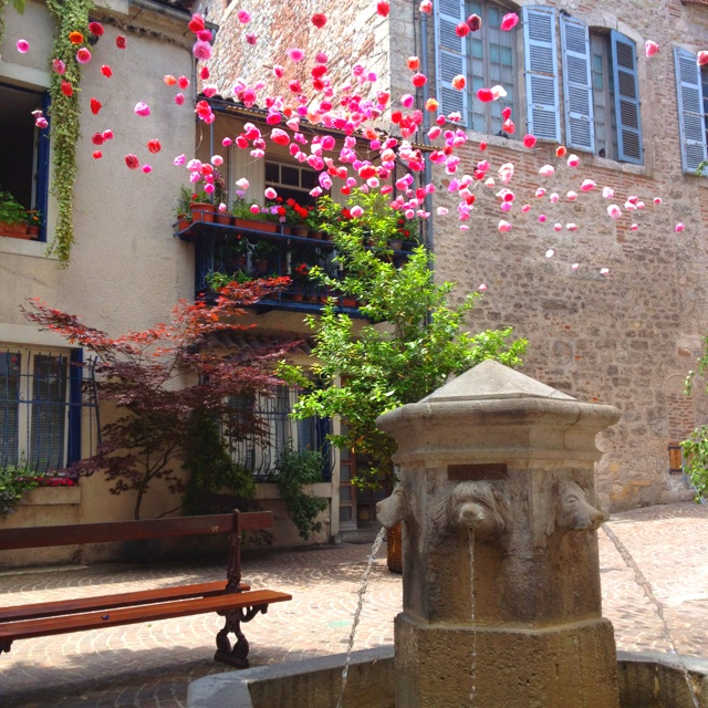Paper flowers and dog fountain, Cahors