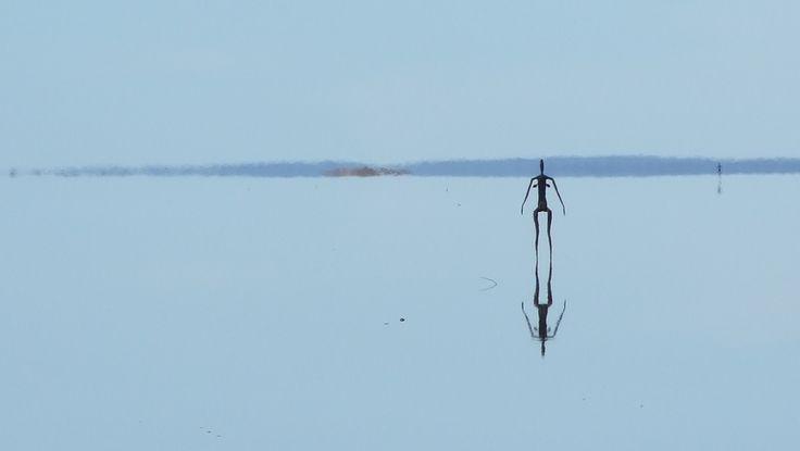 Lake Ballard sculptures, Western Australia.