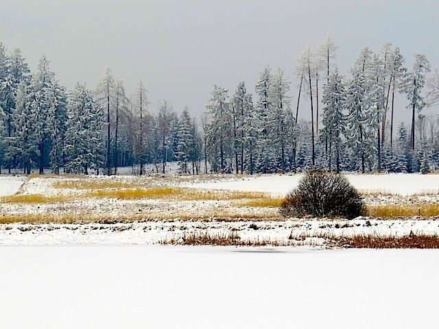 Nördlich von Zwettl, etwas abseits des Ortes Großhaslau liegen in einer flachen Mulde mehrere Teiche, der Ritzmannshof und die Teichhäuser. Die flache und vom Wald verschonte Ebene ist besonders in den Wintermonaten ideal für Spaziergänge.