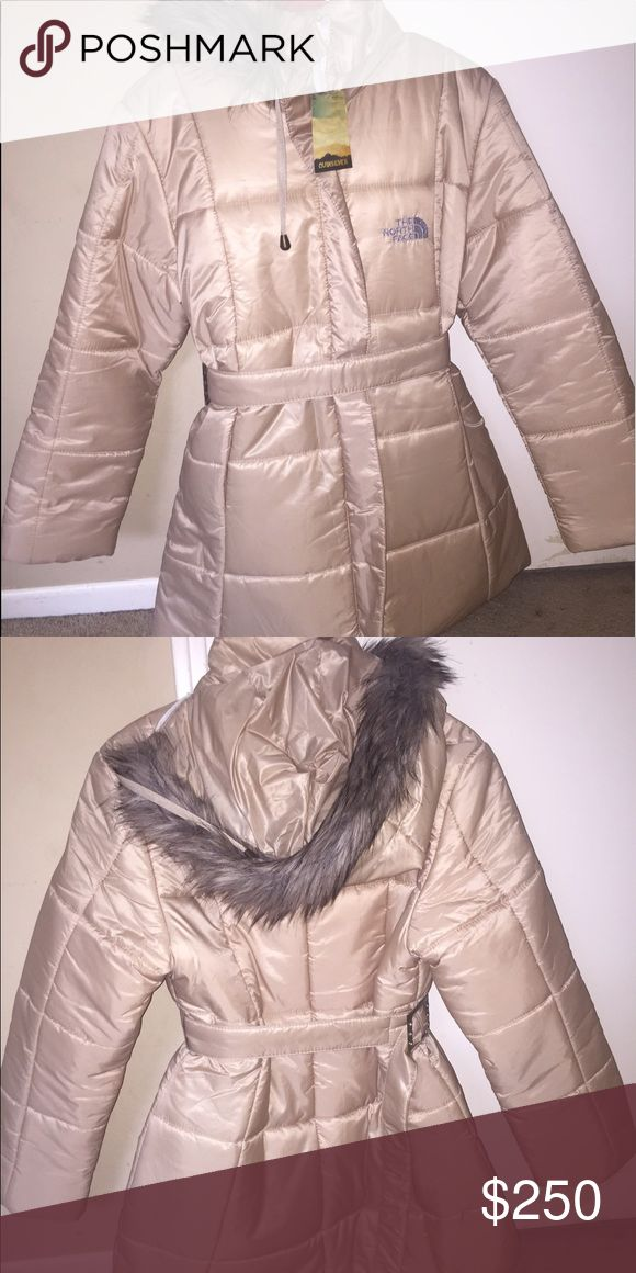 North face winter jacket North face winter jacket. Really cute! Never worn before ! Any offers will be great :) The North Face Jackets & Coats Puffers