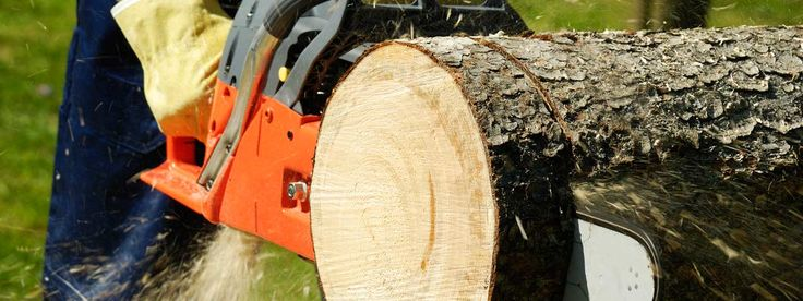 At CTL Services- Complete Tree Lopping we provide a variety of services in Adelaide. Give us a call today on 0411 550 409 for tree removal costs!