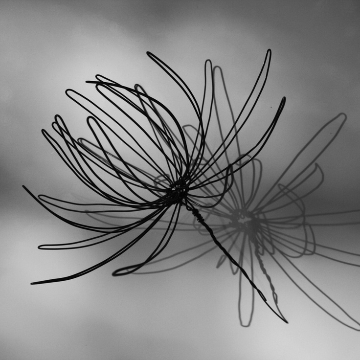 17 Best Images About Wire On Pinterest Martin O 39 Malley