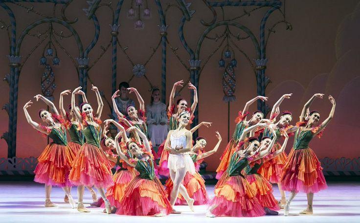 Miami City Ballet (@MiamiCityBallet) | Twitter