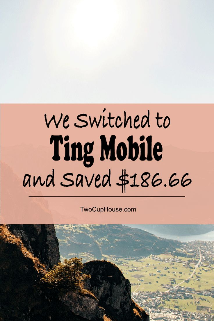 I wanted a lower phone bill and I was willing to sell my iPhone in order to make it happen, but it didn't come to that.  Before I made the switch to Ting Mobile, I had been on the fence about switching cell phone service providers, so I did hours and hours of research into mobile virtual network operators like Ting.  Making the switch to Ting was super easy and took me minutes to complete—the phone does most of the work.