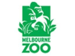 Melbourne Zoo. First visit Sunday 27th January 2013.