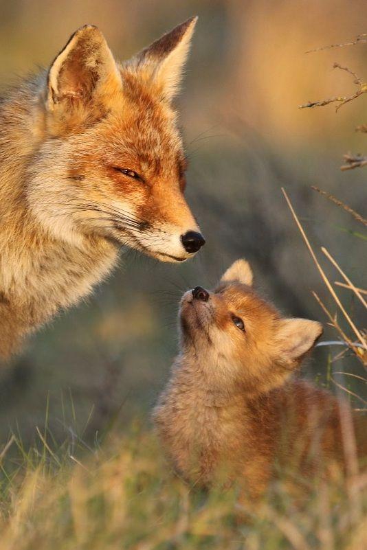vader en zoon. of moeder en dochter....