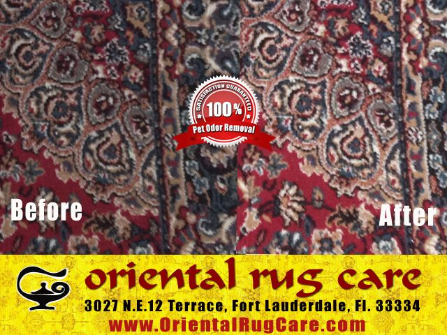 Area Rug Cleaning Specialists in Florida