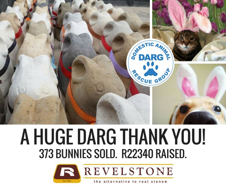 We raised R22 340, FOR DARG. Well done Revelstone team.