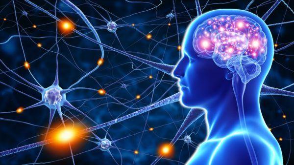 Es gibt einen einfachen Grund, warum wir immer wieder unangenehme Situation erleben. Durch ständiges negatives Denkentrainieren wir unser Gehirn dazu, die Welt als negativ und schwierig zu sehen, auf diese Weise erschaffen wir diese unangenehme Situationen oft unbewusst selbst. Bilder:© pankajstock123/© adimasFotolia.com Das Gehirn ist ein äußerst flexibles Organ, das darauf ausgelegt ist, sich an