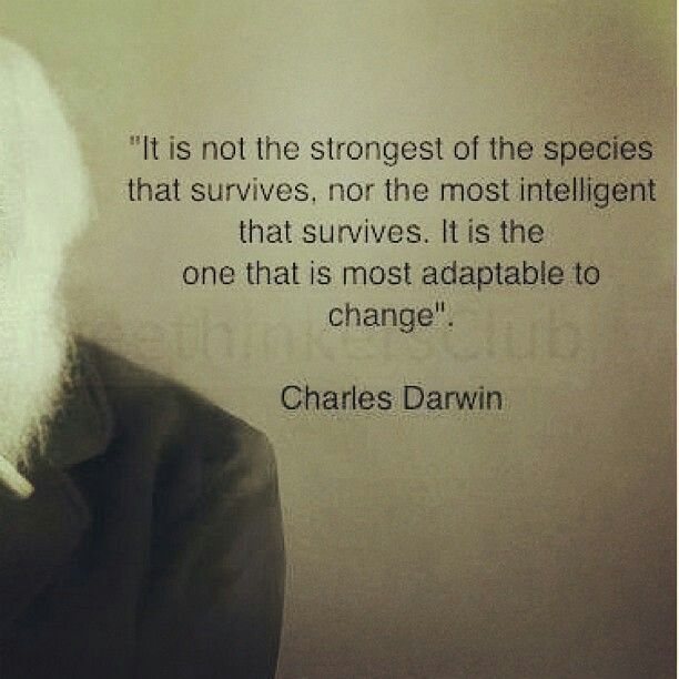 Darwin Quotes: Best 25+ Darwin Quotes Ideas On Pinterest