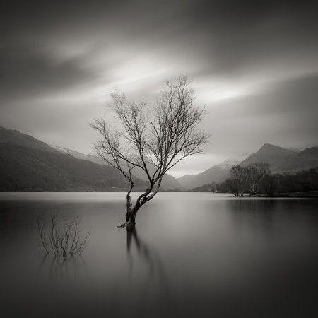 Immersed / Darren Moore Photography