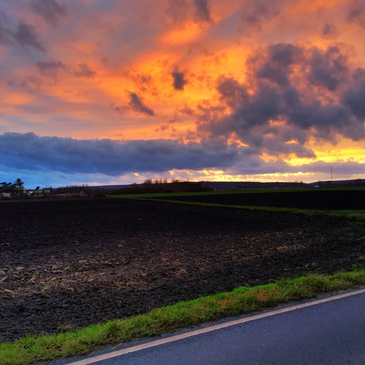 Geinsheim, Germany #sunset #nature