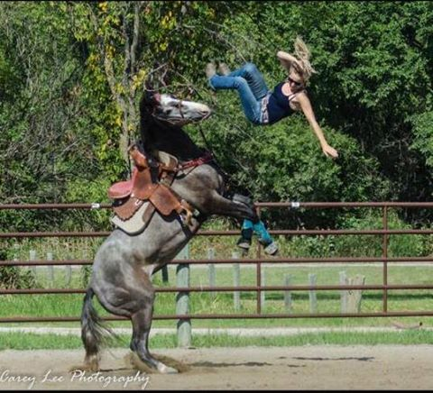 Barrel horse for sale - cheap:)