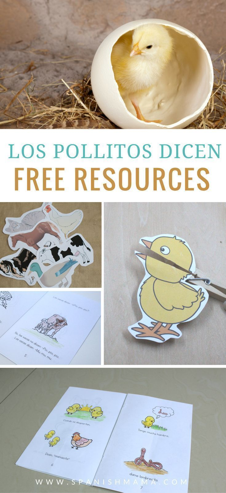 Los Pollitos Dicen Pio Pio Pio Lyrics And Free Printables