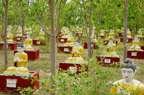 Hundreds of Buddha statues in forest near Monywa, Myanmar