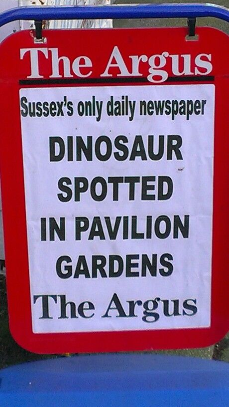 The local newspaper for Brighton & Hove is The Argus. One of their headlines: 'Dinosaur spotted in pavilion gardens'