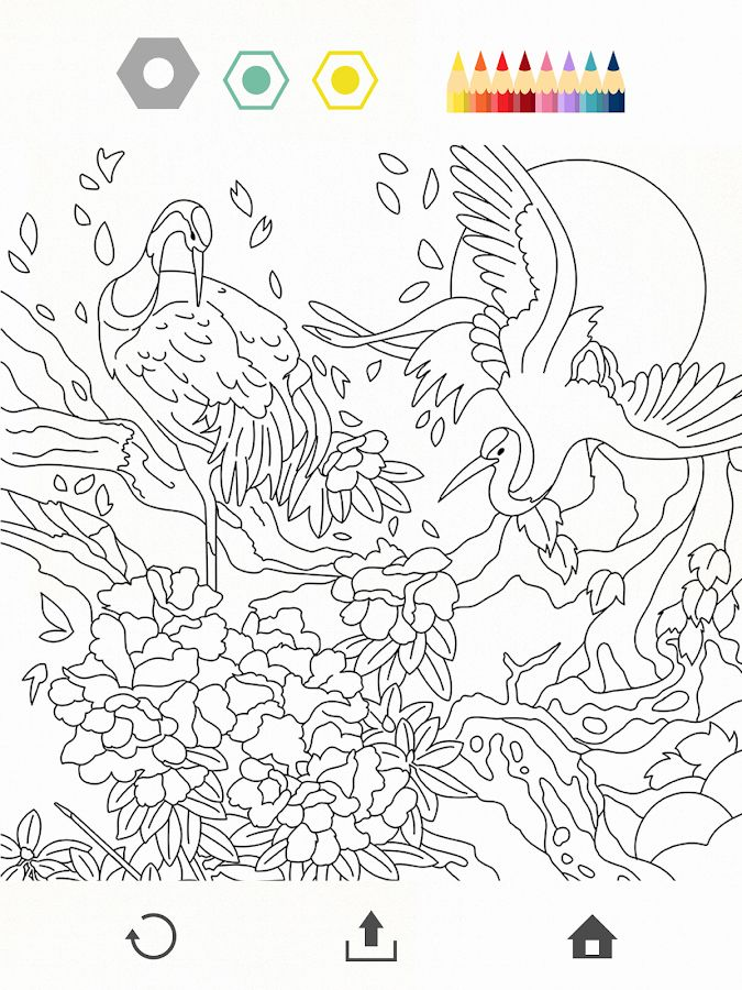 Colorfy Coloring Book Free : colorfy, coloring, Colorfy, Coloring, Luxury, Android, Google, Books,, Enchanted, Forest