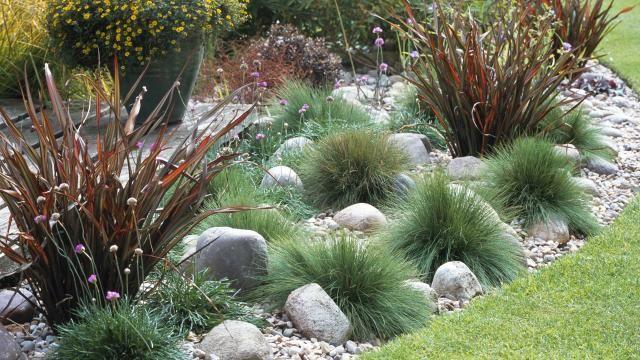 steingarten mit gras google suche pflanzen pinterest steingarten gr ser und suche. Black Bedroom Furniture Sets. Home Design Ideas