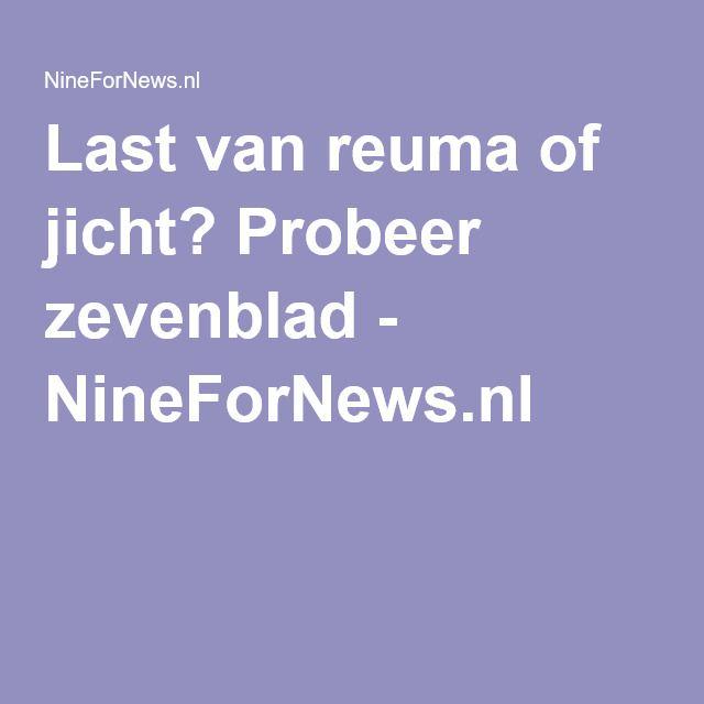 Last van reuma of jicht? Probeer zevenblad - NineForNews.nl
