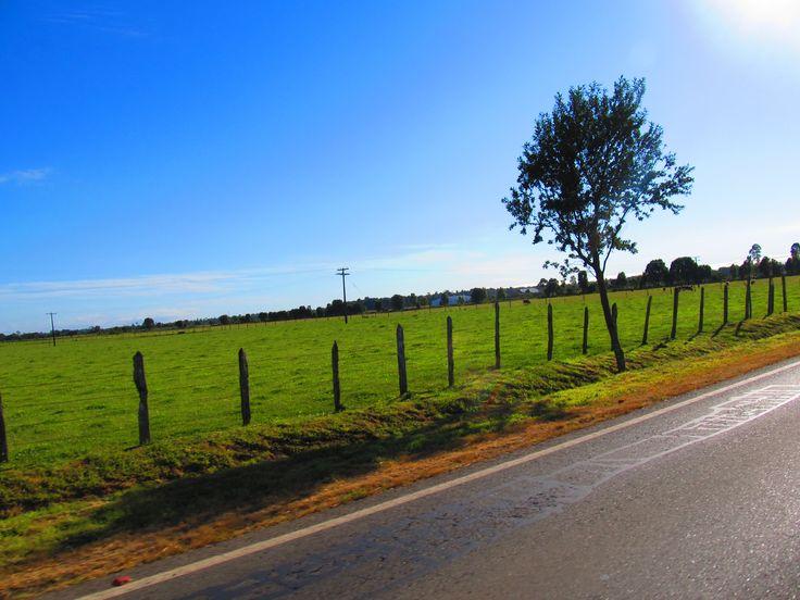Camino a Fresia, Chile