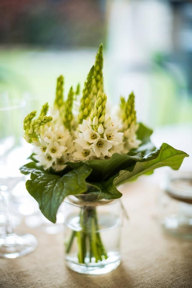 Jar of Chincherinchee Flowers. Glass and chinks, how much better does it get?   wonder-flower, star-of-Bethlehem, chincherinchee; tjienk, tjienkerientjee, (Afr.) FOR MORE INSPIRATION: www.facebook.com/labolaweddings