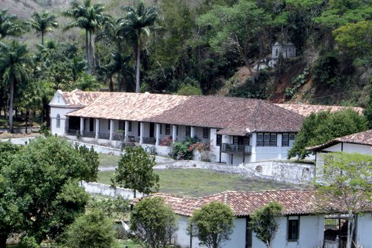 Fazenda Alliança. Brazil  1-bp-faz-allianca-3-copy.JPG