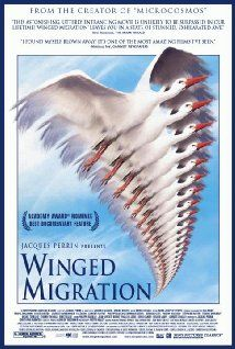Winged Migration: A documentary that tracks migratory bird patterns across all seven continents of our planet. Fascinating, informative and beautifully shot, this film will educate you on the lifestyles of migratory birds and the problems they face throughout the world.